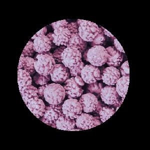 Ricci Lilla - Confetti Maxtris 1 kg